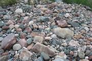 四川男子驱车千余公里鉴定奇石 专家称其为鹅卵石