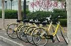 ofo共享单车学生认证流程