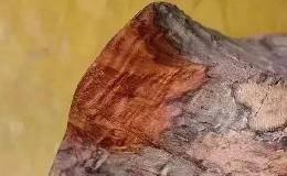 红木有什么特质让人们这么追捧?