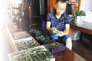 他17年收藏古铜锁 最大心愿是建一家锁博馆