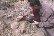 揭秘收藏陨石的猎星者 价贵有的1克3000元