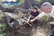 男子发现明代沉木价值两千万 主人表示要捐给故宫