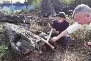 院子里的烂木头估值2000万 竟是600多年前的金丝楠木
