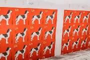 《戊戌年》生肖邮票2018年1月5日发行 你准备好了吗?