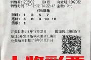 新晋彩民胡乱选号 10元翻1020倍