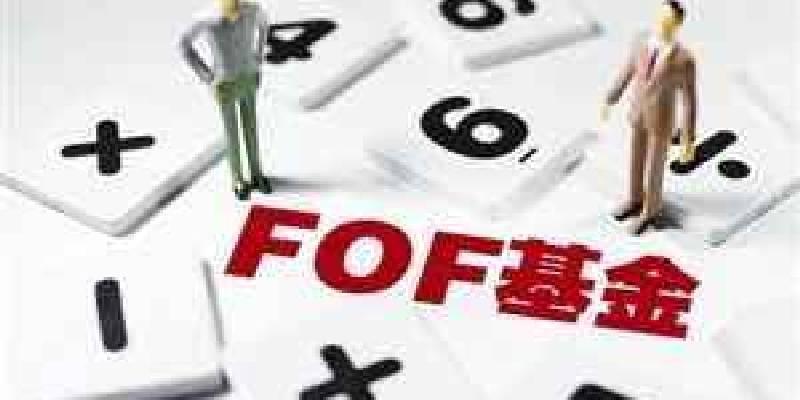 公募FOF元年开启行业新机遇 FOF投资是一项复杂工程