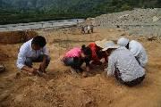 永嘉坦头遗址发掘意义重大 首次完整揭露唐代瓯窑窑场
