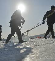 采冰人日采冰90噸