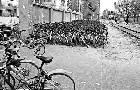北京:共享单车乱象将立法解决
