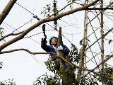 """宁波电网""""攻守结合""""维护线路确保春节可靠供电"""