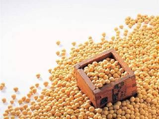 期货市场多数暴跌 中美贸易战暂不会波及大豆