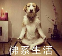 佛系生活是什么