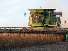 解析俄罗斯大豆的潜力及问题