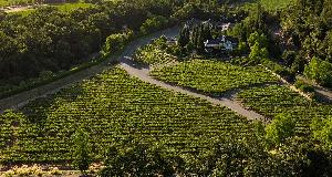 杜克霍恩酒庄收购加州著名黑皮诺生产商