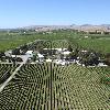马尔堡生产商新设产区标识保护长相思葡萄酒