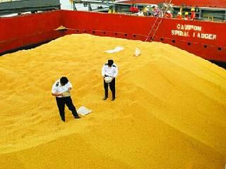 中国9月大豆进口同比下降 但高于市场预期