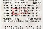 沈阳福彩开出11万元 机选彩票击中二等奖
