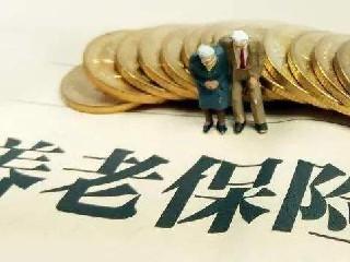 漯河市关于暂停办理机关事业单位养老保险业务的通知
