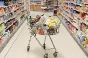 欧美彩票业与商超零售业融合:加拿大的两套超市售彩系统