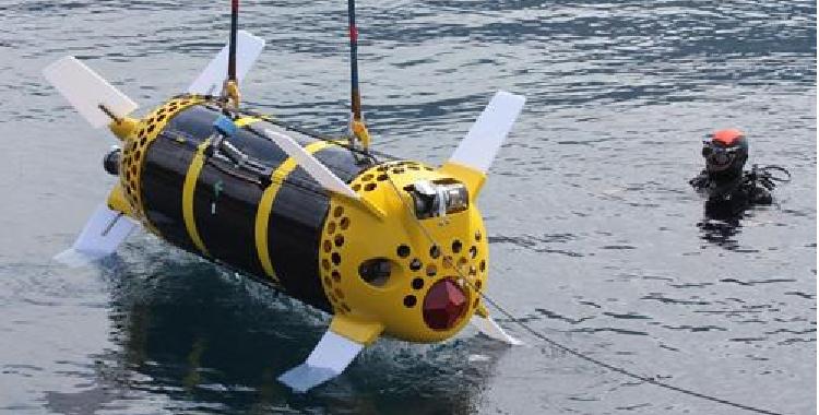 机器人将世界上第一个婴儿珊瑚送到大堡礁