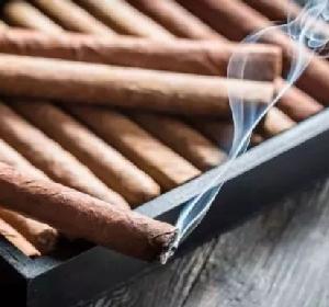 云南普洱市局(公司)将高质量推动雪茄烟试种项目