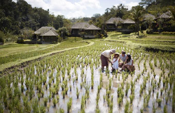 巴厘岛丽思卡尔顿度假酒店推出全新奢华旅行体验项目