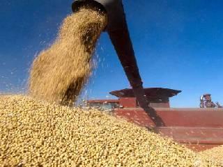 2027年之前美国大豆出口难以再现昔日辉煌