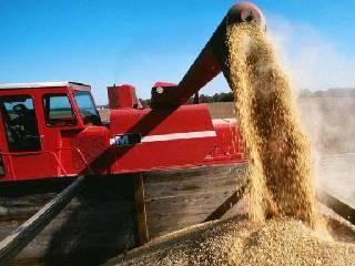 USDA预计美豆种植面积下降 油脂季节性转弱不改