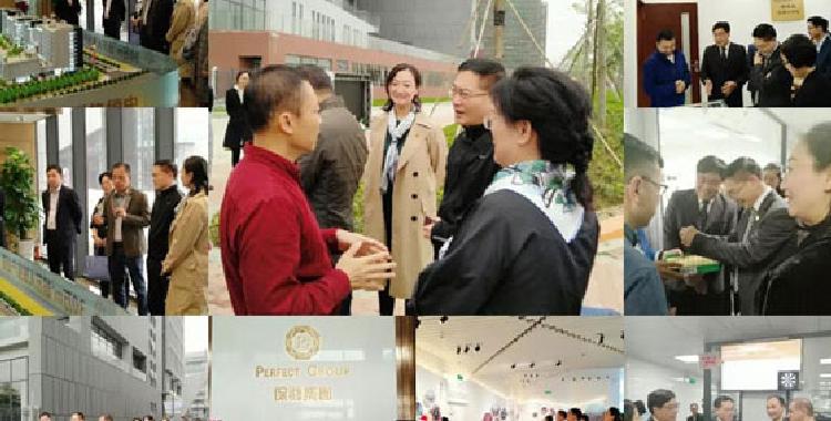 《顺德粤港澳大湾区珠宝产业园发展规划》评审通过