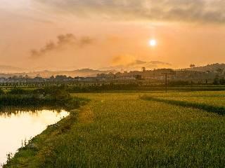 韩长赋:实施乡村振兴战略专题研讨报告