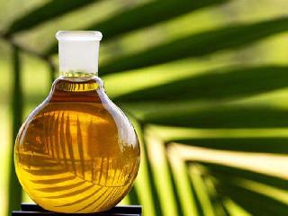 棕榈油基本面相对疲弱 预计短期价格承压