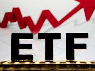 """险资配置ETF思路清晰 宽基ETF仍是""""心头好"""""""