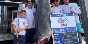 澳男童捕628斤巨鲨 此举或能成为一项新世界纪录