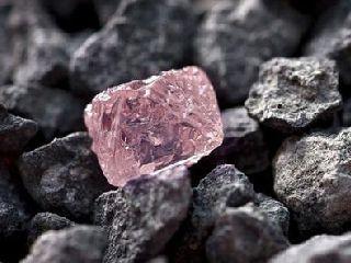 铁矿石期权将是大商所首个工业品期权