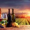 马赛多酒庄:奉上一款由梅洛酿成的超凡佳酿
