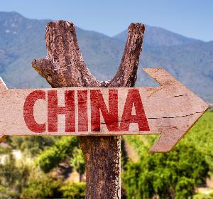 威龙葡萄酒:中国最大的有机葡萄酒生产商