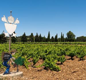 琪顿酒庄:极具当地特色的葡萄酒庄