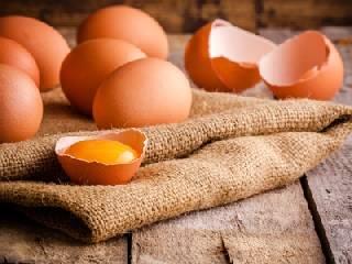 雞蛋價格行情預判 此輪能漲到什么高度