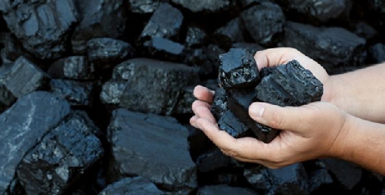 峰度夏即将到来 动力煤价格仍以偏强运行