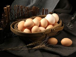 5月份鸡蛋价格能否继续维持高位?