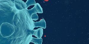 变异病毒是怎么回事