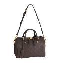Louis Vuitton 2013 早春棕色SPEEDY 25 手袋