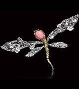 CINDY CHAO大师系列蜻蜓系列海螺珠蜻蜓胸针