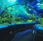 景点大全-上海长风公园长风海洋世界景区