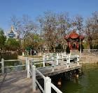 景点大全-宁夏银川中山公园