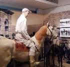 景点大全-香港赛马博物馆