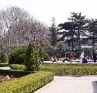 景点大全-上海复兴公园