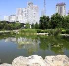 景点大全-北京庆丰公园