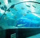 景点大全-北京工体富国海底世界