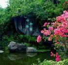 景点大全-厦门园林植物园